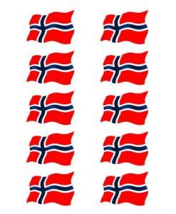SPBFLR10-norsk1