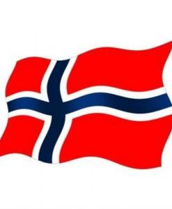 flagg1