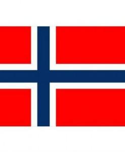 flagg2
